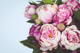 Fototapety Pink Peony flowers with blue background.