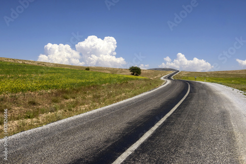 curving asphalt road in rural area Poster