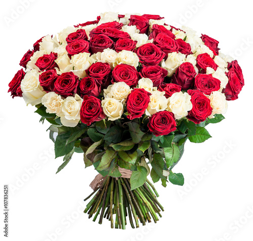 101 Red white rose bouquet isolated on white background Poster