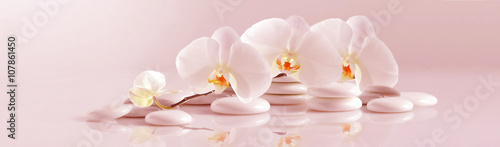 Foto op Plexiglas Spa White Orchid with white pebbles on the pale pink background. Panoramic image