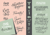 Fototapety Vector alphabet. Hand drawn letters. Letters of the alphabet written with a brush. Wedding invitation set, RSVP, menu options, thank you card