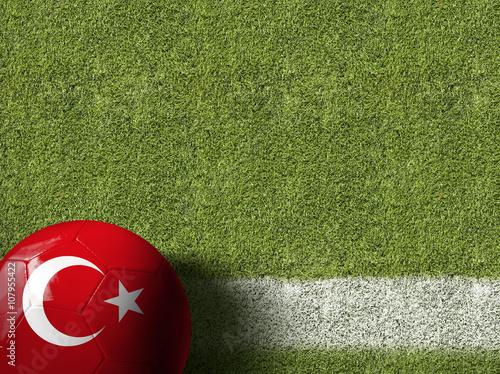 Poster Turkey Ball in a Soccer Field