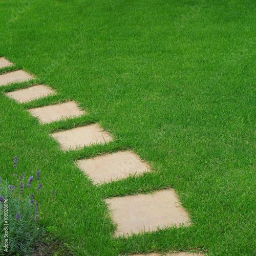 Beautiful lawn and path - 108028096