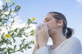 Woman sneezing in a daisy flowers meadow