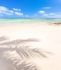 ombre de cocotier sur plage de l'île Maurice