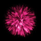 Fototapety Color dust splash blast outburst explosion.