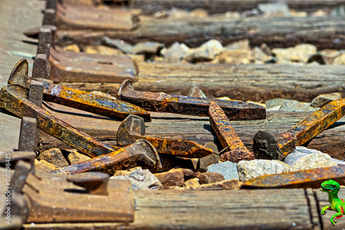 Poster Railroad spikes laying on ground in a pile with dino