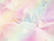 Flower background 38