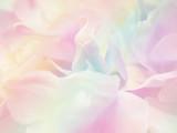 Flower background 38 - 108133634