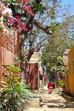 Fototapety Petite rue colorée de Gorée.
