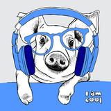 Świnia w okularach i słuchawkach