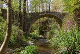 Medieval Bridge in Tris Elies in Troodos, Cyprus