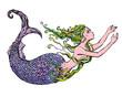 Obrazy na płótnie, fototapety, zdjęcia, fotoobrazy drukowane : Hand drawn Illustration of a Beautiful mermaid girl isolated on