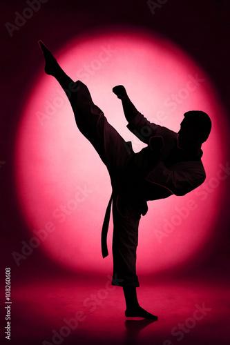 Fototapeta Karate kick