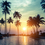 Beautiful sunset with silhouettes of palm trees on a tropical beach in Southeast Asia.