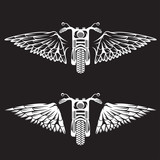 biker theme labels set  with bike and wings