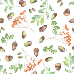 A seamless pattern with a floral ornament of the watercolor forest elements (oak acorns, rowan and branches) on a white background