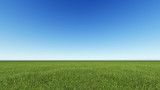 Fototapety Beautiful landscape, grass clean blue sky
