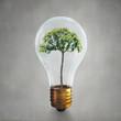 Obrazy na płótnie, fototapety, zdjęcia, fotoobrazy drukowane : Alternative energy concept