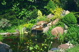 Fototapeta Rocks - Rockery and pond © 7monarda