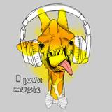 Żyrafa w słuchawkach.