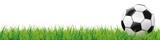 Fußball auf dem grünen Rasen Header - 108423421