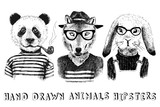 Hand drawn dressed up animals in hipster style - 108462608
