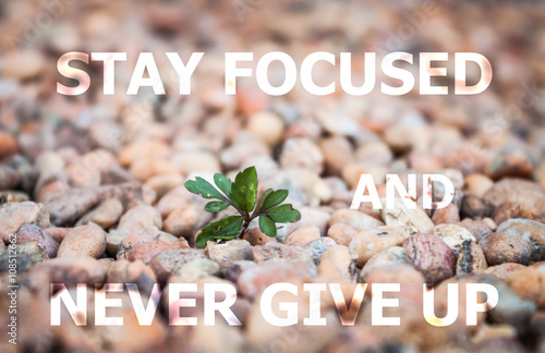 Stay focused and never give up inspirational quote Photo by punsayaporn