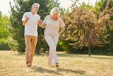 Verliebtes Paar Senioren beim Spaziergang