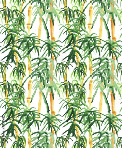 Bamboo hand drawn