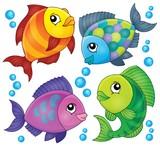 Fish topic image 2