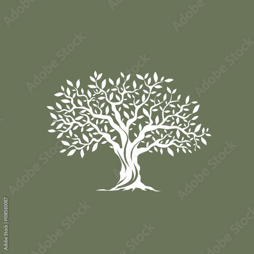 Beautiful magnificent olive tree silhouette on grey background. Infographic modern vector sign.  Premium quality illustration logo design concept.