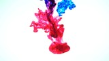 Color Ink flowing in water on white background