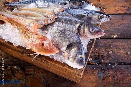 Fresh raw mackerel fish on cutting board