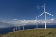 Wind turbines. Maui, Hawaii, USA
