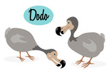 Dodo bird illustration. Cartoon style. Extinct bird. Vector bird. The dodo (Raphus cucullatus) is an extinct flightless bird. On white  background.