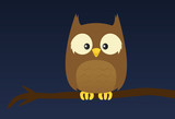 Simple owl on a tree branch at night