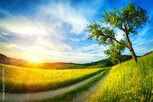 Poster Idyllische Landschaft bei Sonnenuntergang