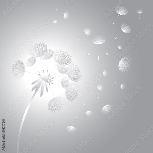 abstract-fluffy-dandelion-flower-vector-illustration