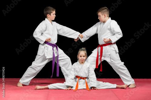 Fototapeta Group kids Karate martial Arts