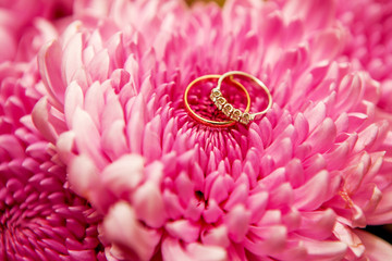 Beautiful shiny wedding rings with diamonds on the pink flowers.