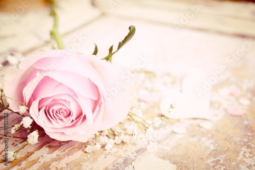 Poster rosa Rose mit Herz - Nostalgisch - Glückwunschkarte