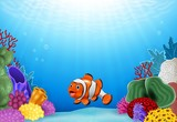 Cute clown fish with Coral Reef Underwater in Ocean
