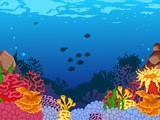 beauty coral and underwater background