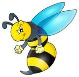 Wasp theme image 1