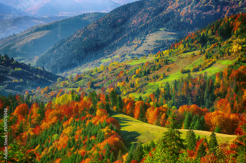 Panel Szklany the mountain autumn landscape with colorful forest