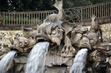 dolphin fountain in the royal palace of Caserta Italy