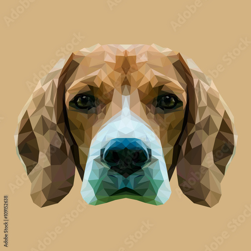 Beagle dog animal low poly design. Triangle vector illustration. © shekularaz