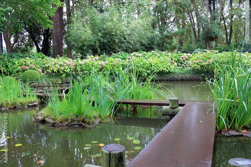 Fototapeta Japanese garden in Uruguay, Montevideo