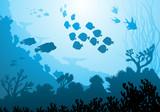 Sea underwater world with different animals